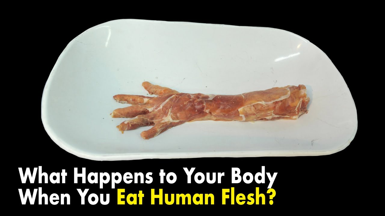 Download What Happens to Your Body When You Eat Human Flesh?