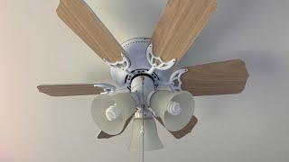 Litex Vortex Hugger Ceiling Fan (With Light Kit)