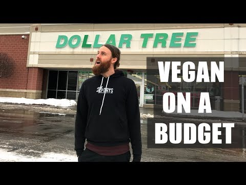 What's VEGAN at Dollar Tree? On a BUDGET