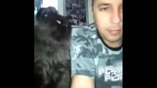 Когда кот и человек любят друг-друга