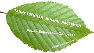 Таинственная жизнь растений. Выпуск 1
