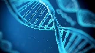 Как делают экспертизу ДНК и сколько по времени?