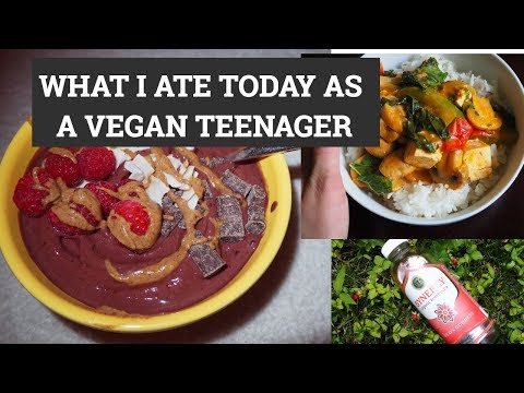 WHAT I ATE TODAY AS A VEGAN BALLET DANCER