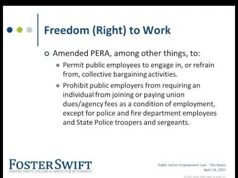 Public Sector Employment Law - The Basics