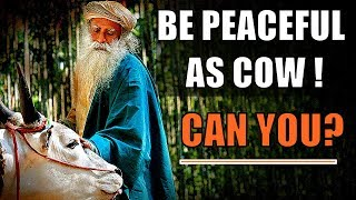 Sadhguru - If you are loving and ecstatic, you don't need a damn heaven !