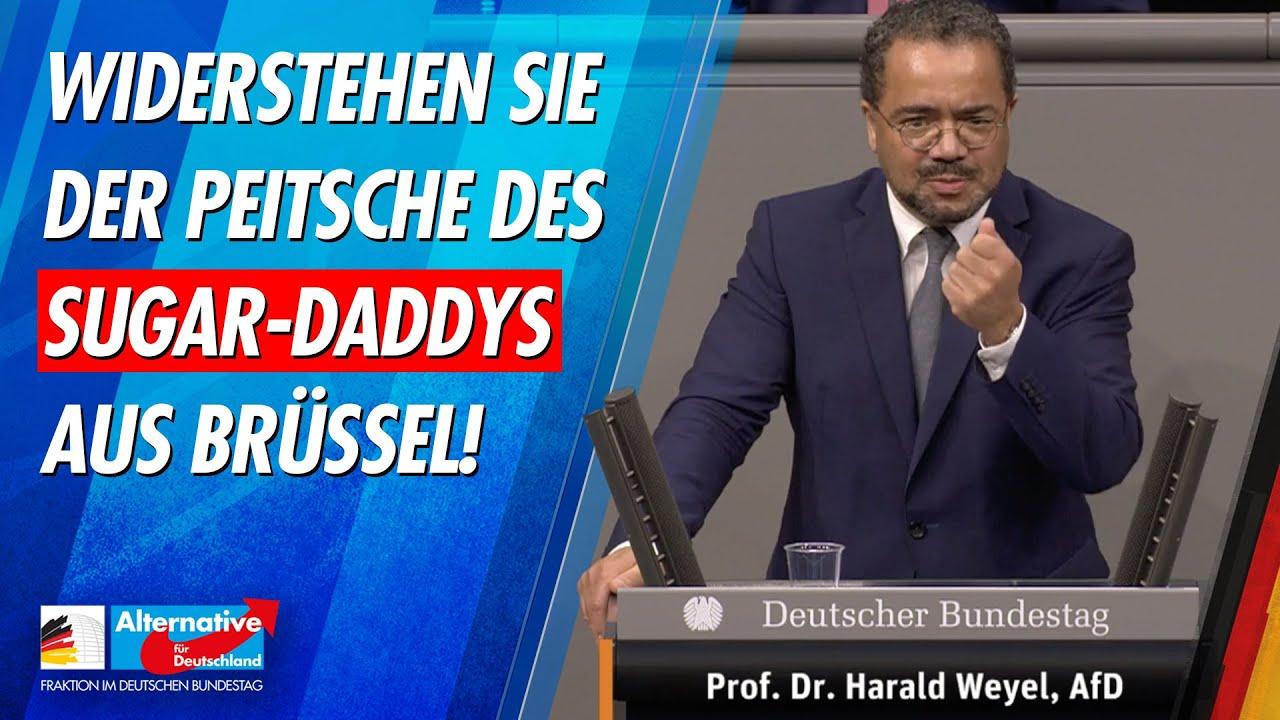 Widerstehen Sie der Peitsche des Sugar-Daddys aus Brüssel! - Prof. Dr. Harald Weyel - AfD-Fraktion