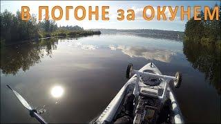 Рыбалка на Каяке на Окуней и Встреча с Орлом (Kayak Perch Fishing)(Друзья, первый выход на пресноводную рыбалку по Вашим заказам. По улову не очень, но очень красивые места..., 2015-12-01T13:24:05.000Z)