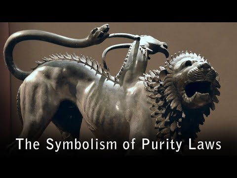 Mixing Linen and Wool -- The Deep Symbolic Meaning of Purity Laws in The Bible