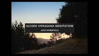 Jack Kornfield - Guided Vipassana Meditation - Spirit Rock Meditation Center