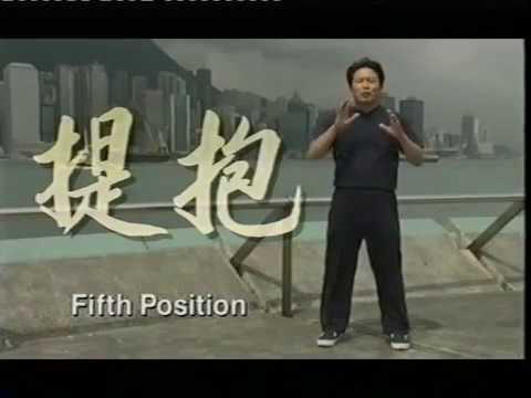 Zhan Zhuang Qi Gong - Lam Kam Chuen - Stand still be fit - El camino de la energia - Día 10
