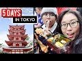 5 DAYS IN TOKYO ♦ Japan Travel Vlog ft. Heyitsfeiii