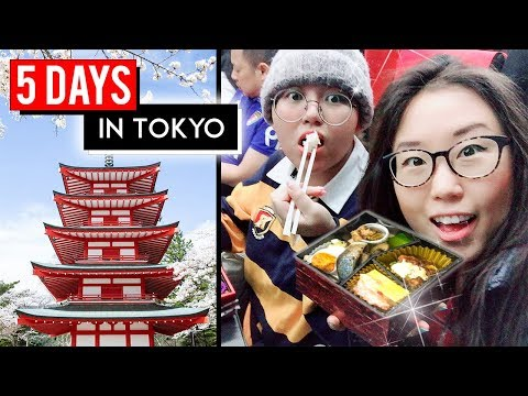 5 DAYS IN TOKYO ♦ Japan Travel Vlog ft. Heyitsfeiii