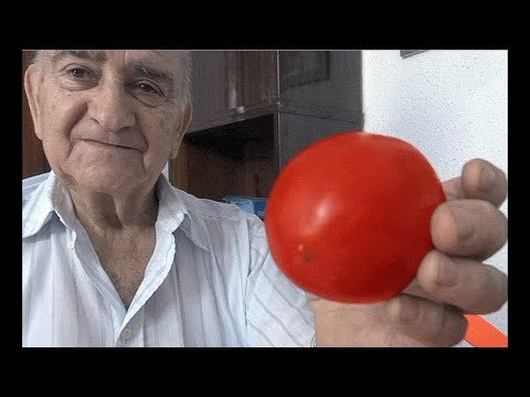 El huerto de Isidro: 18. Semilla del tomate de pera