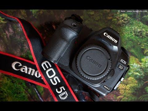 Hướng dẫn sử dụng Canon 5D Mark II - So sánh 5D Mark II, 6D và 80D