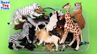 100 Wild Zoo Animal Toys - Learn Animal Names
