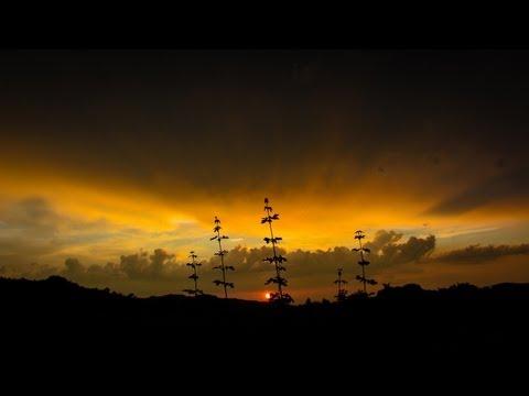 Nebo iznad krajolika / 2006