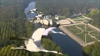 Журавлиный полёт.Птицы белые мои_ Константин Никольский(, 2015-11-26T15:17:55.000Z)