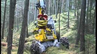 Fahrsequenzen - Driving scenes in the forest of the Menzi Muck Harvester A91
