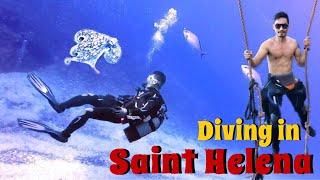 ดำน้ำ Diving in Saint Helena Part 1