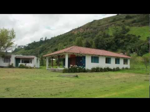 San Fernando Property