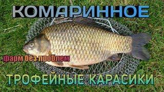 Русская Рыбалка 4 фарм на КОМАРИННОМ!