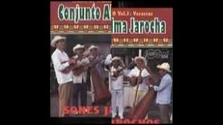 Conjunto Alma Jarocha - Siquisirí, La Morena, El Pájaro Carpintero & María Chuchena