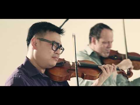 Eleanor Rigby, performed by Sirius Quartet (Official Video)