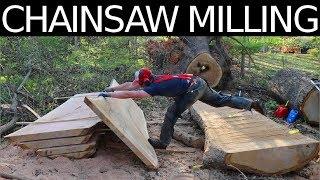 HUGE CHAINSAW MILLING JOB!! 45 Foot White Oak!!!