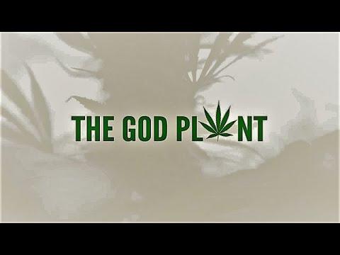 Божественное растение (2018)
