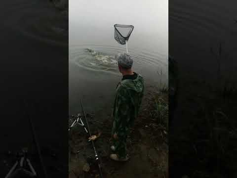 Рыбалка в Подмосковье. Бисерово озеро.