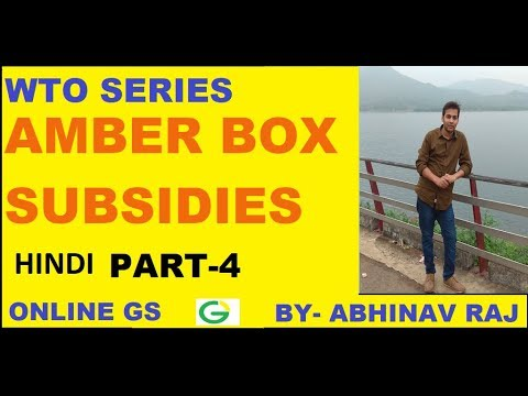 {हिंदी} AMBER BOX SUBSIDY I PART-4 WTO SERIES