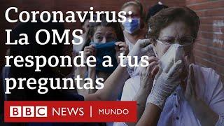 """""""No tendremos una vacuna del coronavirus antes de un año"""": la OPS respondió a tus preguntas"""