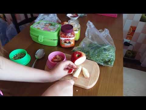 Кормление сирийского хомяка/ Сирийский хомяк/ Как кормить сирийских хомяков?