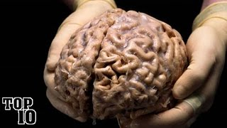 Top 10 Amazing Facts About The Human Brain