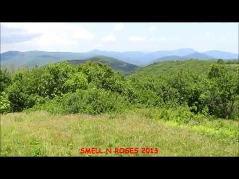 Hiking in Virginia:  Mount Pleasant National Scenic Area and Cole Mountain Appalachian Trail