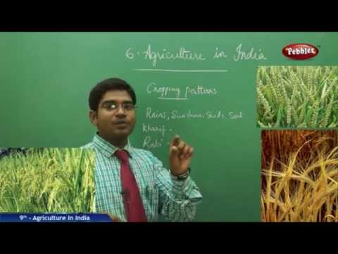 Agriculture in India- Class 9th State Board Syllabus Social Studies
