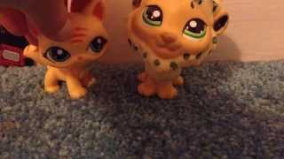 Can you help  me whith a lps costom