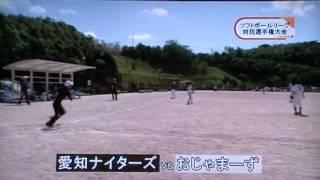 平成23年9月11日に行われた第14回半田市地域ソフトボールリーグ...