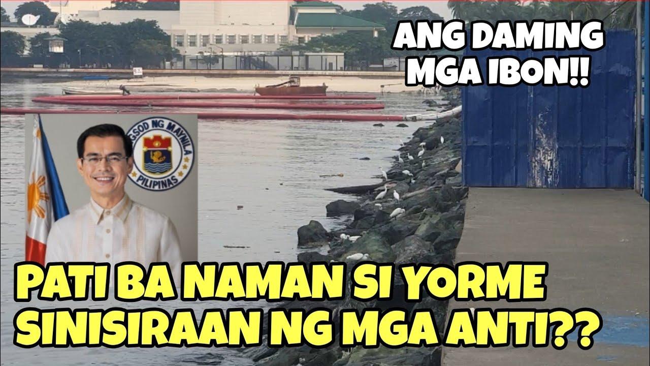 Download Bird watching tayo dito sa Manila Bay white sand    Sept 26, 2020 Updates