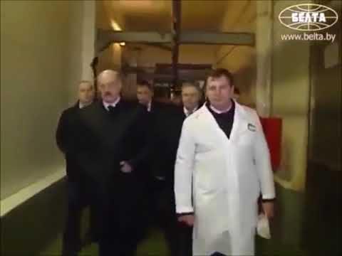 Ревизия Лукашенко:  всех виновных в камеру