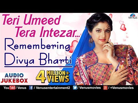Teri Umeed Tera Intezar - Remembering Divya Bharti | Hindi Songs | 90's Bollywood Romantic Songs