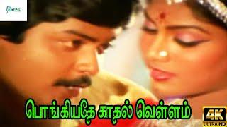 Pongiyathe Kathal Vellam || பொங்கியதே காதல் வெள்ளம் ||S.P.B,S.Janaki || Love Duet melody H D Song