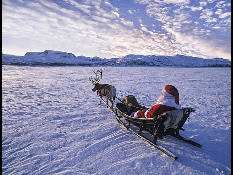🎅Reindeer Ride In Arctic Finland, Rovaniemi / TRAVEL VLOG🎅
