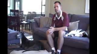 Pdx Pets On The Go! -customer Interviews- Portland Dog Walking