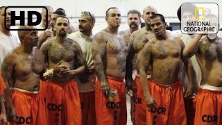 Битва с охранниками! ХУДШИЕ тюрьмы Америки! Американская тюрьма особого режима.