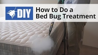 How to Do a Bed Bug Treatment | DoMyOwn.com