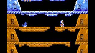 Ice Climber (1985) [NES]