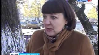 Отлов бродячих собак (ГТРК Вятка)