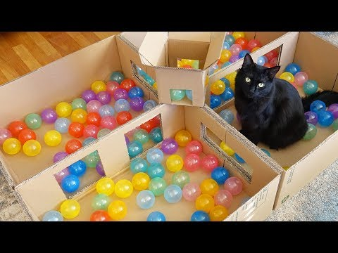 Deluxe Cat Ball Pit!