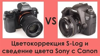 Цветокоррекция S-log и сведение цвета Sony с Canon